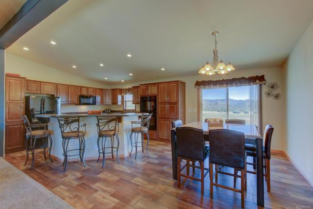 16750 Allen Drive, Buena Vista, CO 81211 (#7182652) :: Bring Home Denver with Keller Williams Downtown Realty LLC