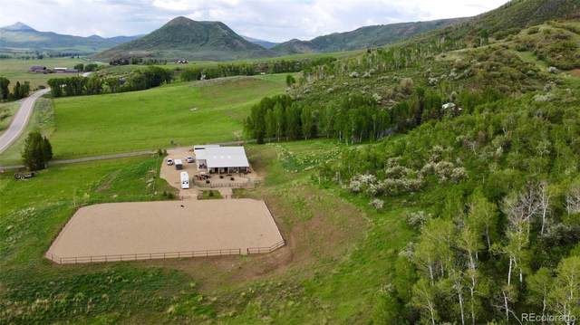 51400 County Road 129, Steamboat Springs, CO 80487 (#7499776) :: The Colorado Foothills Team   Berkshire Hathaway Elevated Living Real Estate