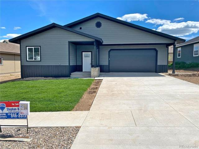 347 Lake View Road, Hayden, CO 81639 (#7553001) :: The DeGrood Team
