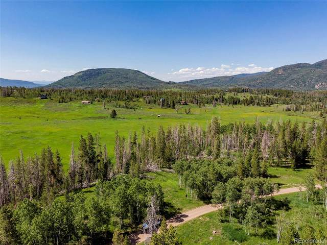 Hoch-Eye Way, Oak Creek, CO 80467 (#7616154) :: Real Estate Professionals