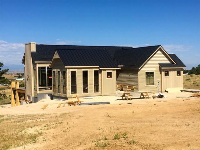8263 Merryvale Trail, Parker, CO 80138 (#8524978) :: The DeGrood Team
