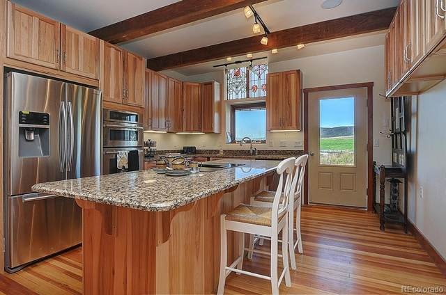 10970 County Road 155, Salida, CO 81201 (#8978795) :: Bring Home Denver with Keller Williams Downtown Realty LLC
