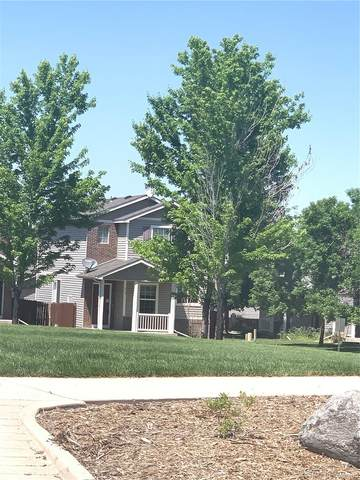 10700 Kimblewyck Circle #113, Northglenn, CO 80233 (#9000313) :: Venterra Real Estate LLC