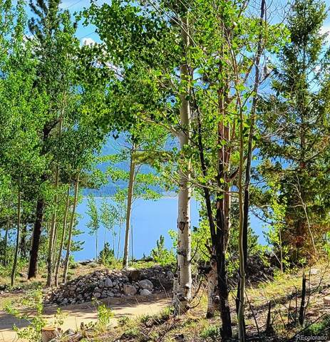 179 Parry Peak Drive, Twin Lakes, CO 81251 (MLS #9286115) :: Bliss Realty Group
