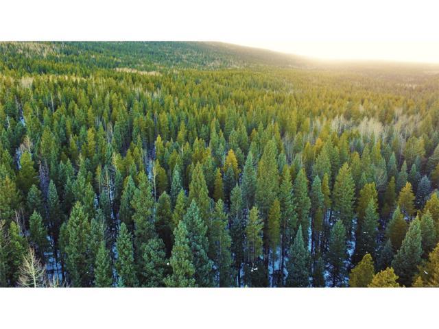 Cub Creek Trail, Bailey, CO 80421 (MLS #9431985) :: 8z Real Estate