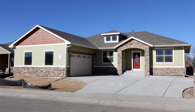 584 S 22nd Circle, Brighton, CO 80601 (#9693830) :: The DeGrood Team