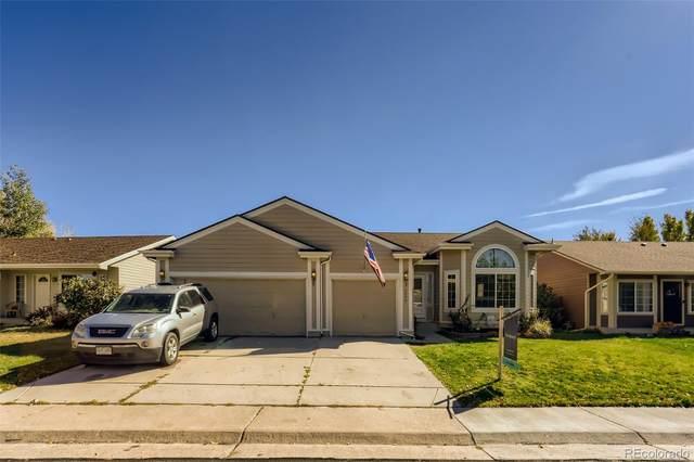 5290 E Kensington Avenue, Castle Rock, CO 80104 (#9783915) :: Signature Realty, Inc.