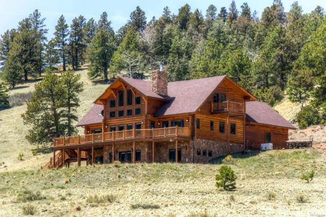 228 Eagle Nest Rd, Westcliffe, CO 81252 (#9901728) :: Wisdom Real Estate