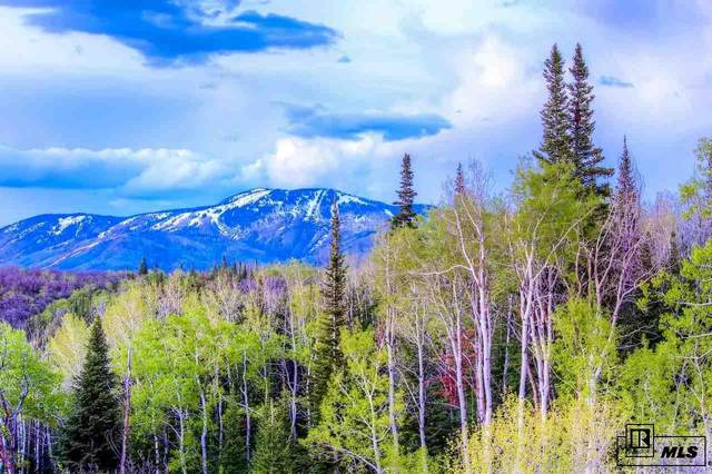 28600 Skyline Drive, Steamboat Springs, CO 80487 (#S171652) :: The DeGrood Team