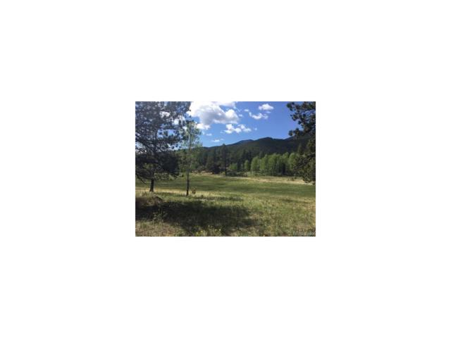 Fs 117A Forest, Shawnee, CO 80475 (MLS #2608153) :: 8z Real Estate