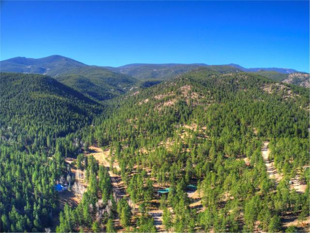 2190 Co Road 68, Bailey, CO 80421 (MLS #3941190) :: 8z Real Estate