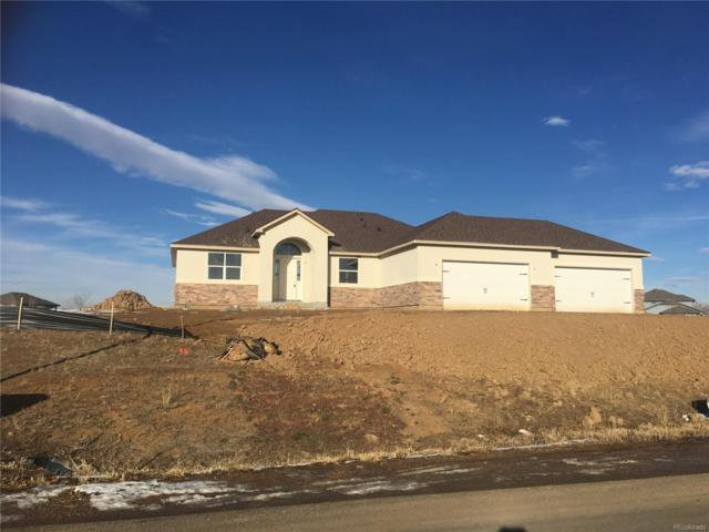 6965 E 162nd Avenue, Brighton, CO 80602 (MLS #4243961) :: 8z Real Estate