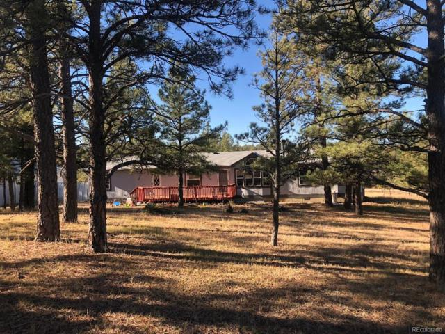 24124 Agate Trail, Deer Trail, CO 80105 (#4494135) :: The Heyl Group at Keller Williams