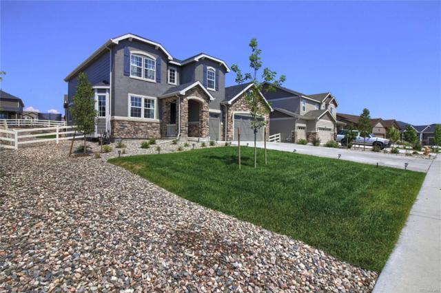 5889 Golden Field Lane, Castle Rock, CO 80104 (#4556577) :: The Griffith Home Team