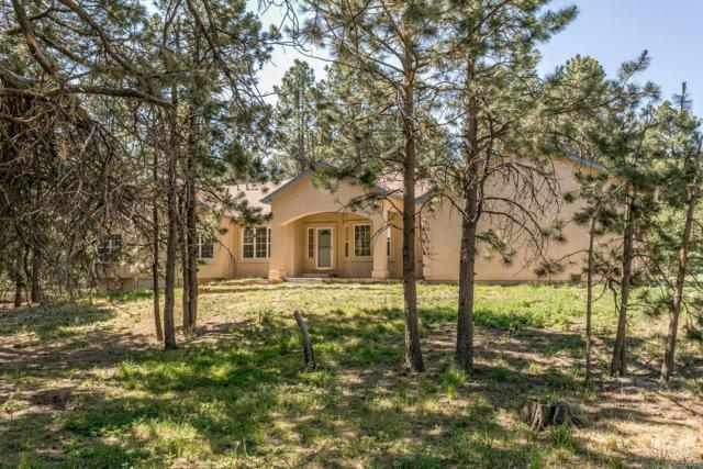 10825 Hardy Road, Colorado Springs, CO 80908 (#4836843) :: The DeGrood Team
