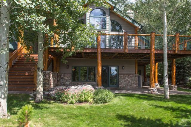695 Meadowbrook Circle, Steamboat Springs, CO 80487 (#6685739) :: The DeGrood Team