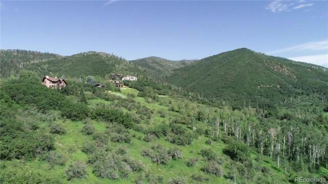 31615 Aspen Ridge Road, Steamboat Springs, CO 80487 (#7284638) :: Mile High Luxury Real Estate