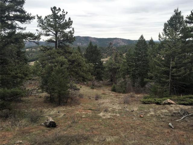 S Homesteader Drive, Morrison, CO 80465 (MLS #8039455) :: 8z Real Estate