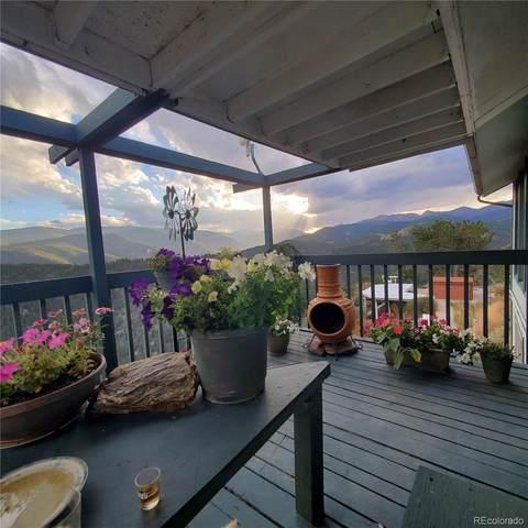 260 S Saddle Drive, Idaho Springs, CO 80452 (#8941117) :: The HomeSmiths Team - Keller Williams