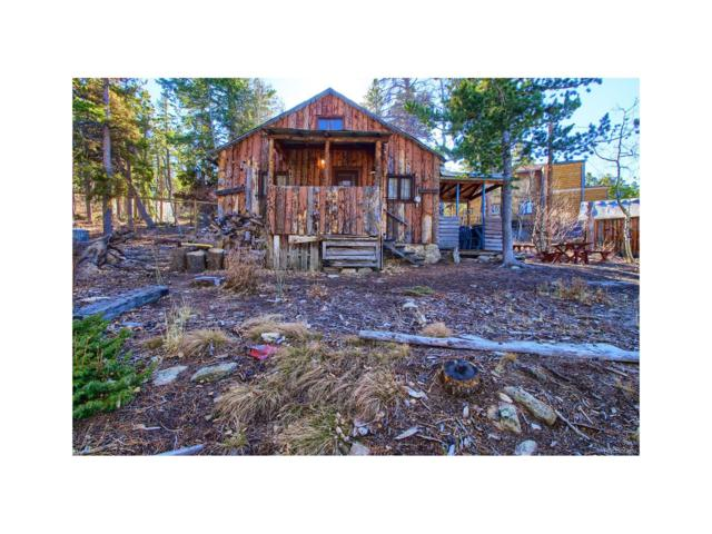 33440 Coal Creek Canyon Drive, Golden, CO 80403 (#2770830) :: The Peak Properties Group