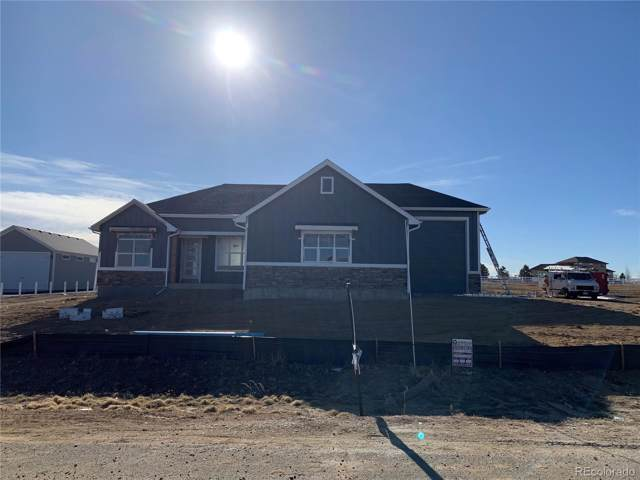 11032 E 162nd Place, Brighton, CO 80602 (#3496148) :: Real Estate Professionals