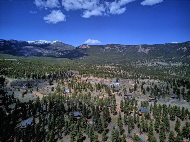40 Gold Flake Terrace, Bailey, CO 80421 (#6382524) :: Wisdom Real Estate