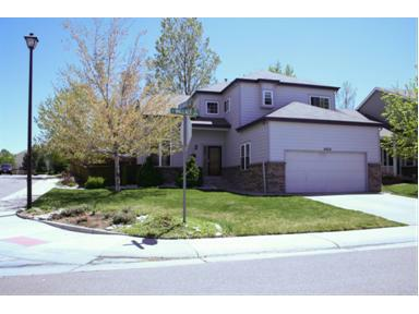 9802 Wallace Court, Highlands Ranch, CO 80126 (#1085955) :: The Peak Properties Group