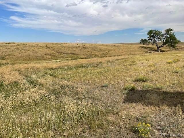 Rolling Vista Trail, Elizabeth, CO 80107 (#1528303) :: milehimodern