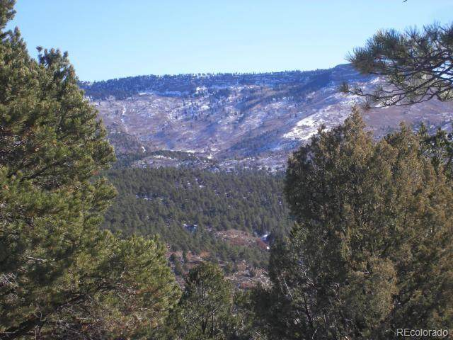 36544 Tin Cup Trace, Trinidad, CO 81082 (MLS #1532810) :: 8z Real Estate