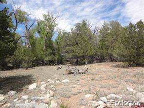 20 Cottonwood Loop, Mosca, CO 81146 (MLS #1581965) :: 8z Real Estate