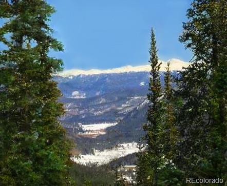 376 Robertson Lane, Breckenridge, CO 80424 (#1626401) :: Bring Home Denver