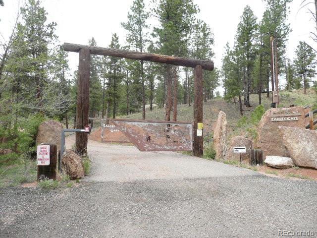 28451 Eagles Gate Road, Pine, CO 80470 (#1628773) :: James Crocker Team