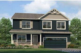 14080 Shasta Daisy Street, Parker, CO 80134 (#1768675) :: Venterra Real Estate LLC