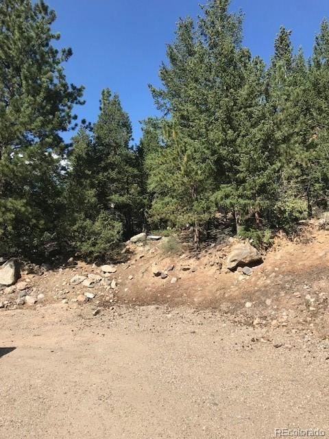 Flatiron Drive, Georgetown, CO 80444 (MLS #1784844) :: 8z Real Estate