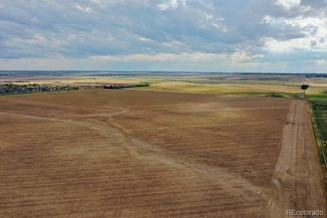 12 56th Avenue, Strasburg, CO 80136 (MLS #1816201) :: Bliss Realty Group