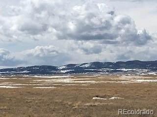 464 Blackfoot Road, Hartsel, CO 80449 (#1946865) :: The Heyl Group at Keller Williams