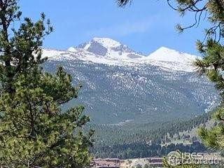 0 Hwy 66, Estes Park, CO 80517 (#2006862) :: Bring Home Denver with Keller Williams Downtown Realty LLC