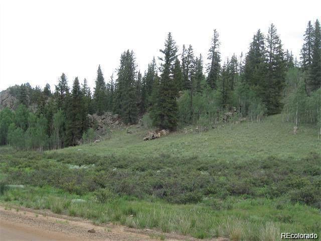 2092 Stagestop Road, Jefferson, CO 80456 (#2204411) :: James Crocker Team