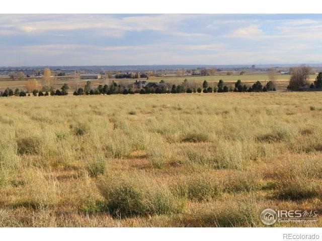 5137 Weld County Road 38, Platteville, CO 80651 (#2258181) :: The DeGrood Team