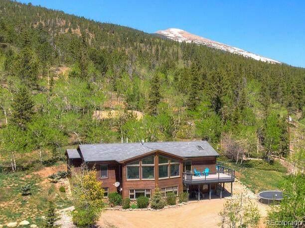 651 Lamb Mountain Road, Fairplay, CO 80440 (#2299945) :: The HomeSmiths Team - Keller Williams
