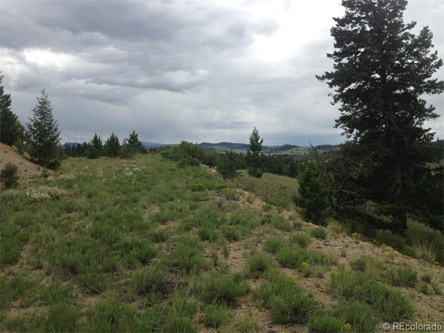 Satanta Trail, Hartsel, CO 80449 (MLS #2338970) :: 8z Real Estate