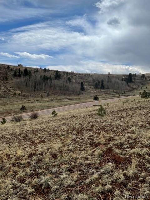 2117 County Road 1, Cripple Creek, CO 80813 (#2363975) :: The DeGrood Team