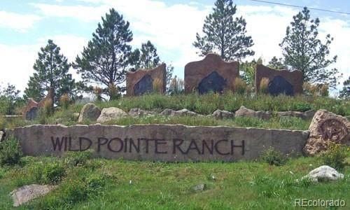 295 High Meadows Loop, Elizabeth, CO 80107 (MLS #2411540) :: Stephanie Kolesar