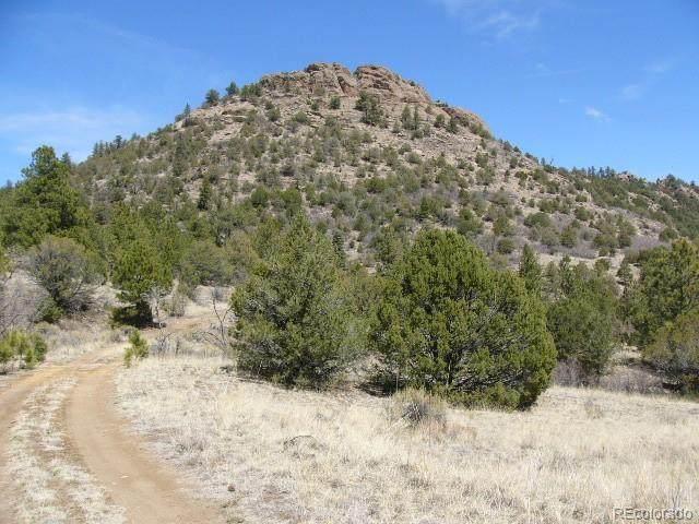 Aspen Trail, Westcliffe, CO 81252 (#2432479) :: The DeGrood Team