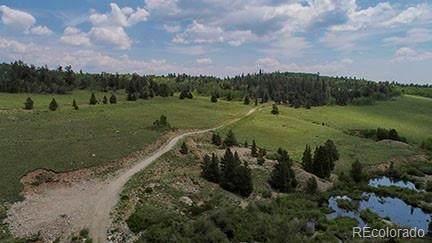 1540 Beaver Creek Road, Fairplay, CO 80440 (#2468244) :: The Griffith Home Team