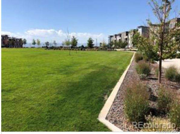 400 E Fremont Place #306, Littleton, CO 80122 (MLS #2533752) :: 8z Real Estate
