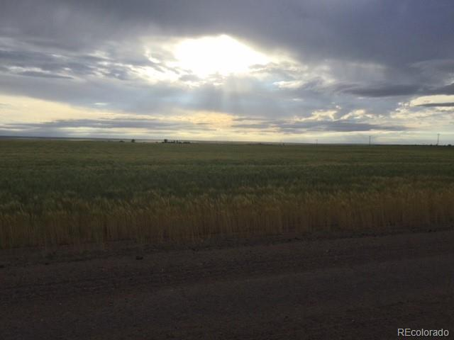 Parcel #2 Converse Road, Bennett, CO 80102 (#2535932) :: The DeGrood Team