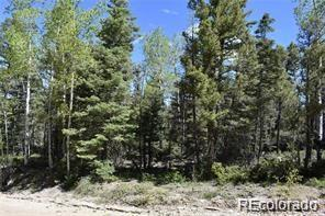 6052 Woods Rd, San Luis, CO 81152 (#2548450) :: Structure CO Group