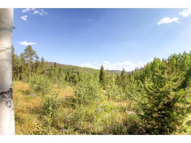 144 County Road 412, Granby, CO 80446 (MLS #2577130) :: 8z Real Estate