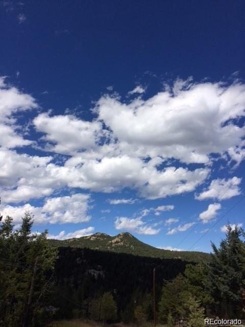 00 S Turkey Creek Road, Morrison, CO 80465 (#2587253) :: The HomeSmiths Team - Keller Williams
